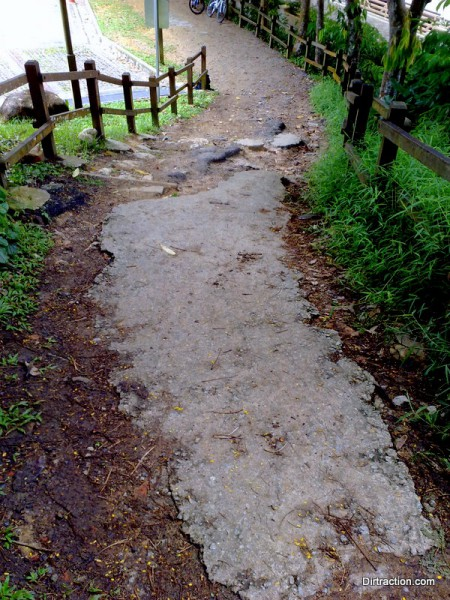Bukit Timah Trail Head - before the rebuild
