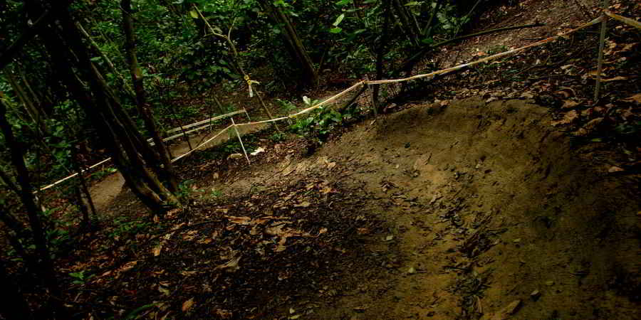 Kent Ridge Park Flow Trails