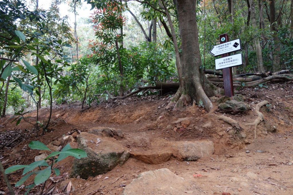 the new trailhead. the first official black diamond section in Hong Kong