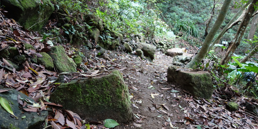 Ho Pui Entrance Trail